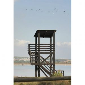 equipamiento_medioambiental_madera_torre_observatorio_aves_1
